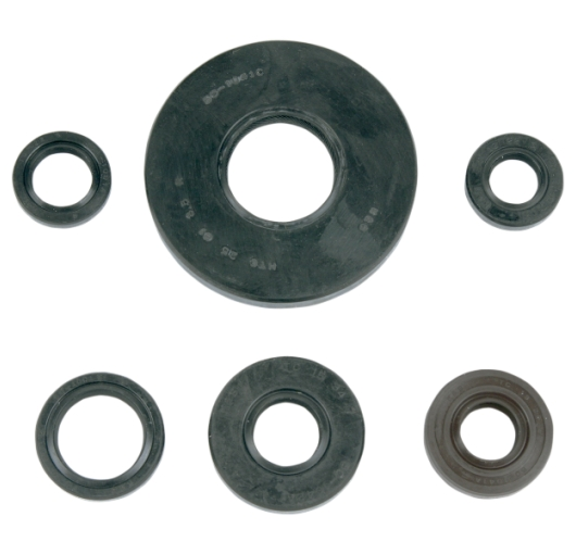 Engine Oil Seal Kit - Honda ATV (300 TRX 2x4)