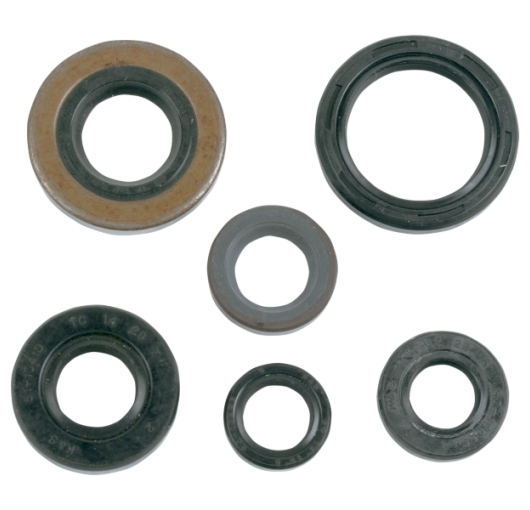 Engine Oil Seal Kit - Honda ATV (400EX/X TRX)