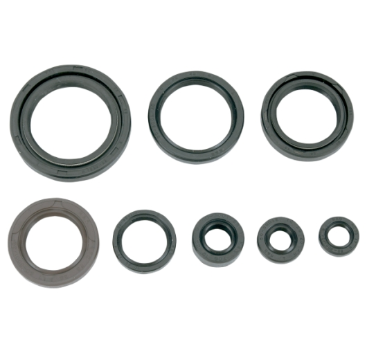 Engine Oil Seal Kit - Suzuki ATV (250R LT Quad Racer 85-86)