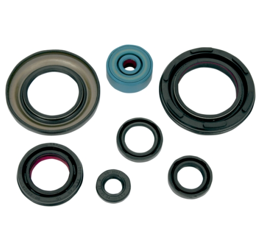 Engine Oil Seal Kit - Yamaha ATV (350 YFZ Banshee 87-06)