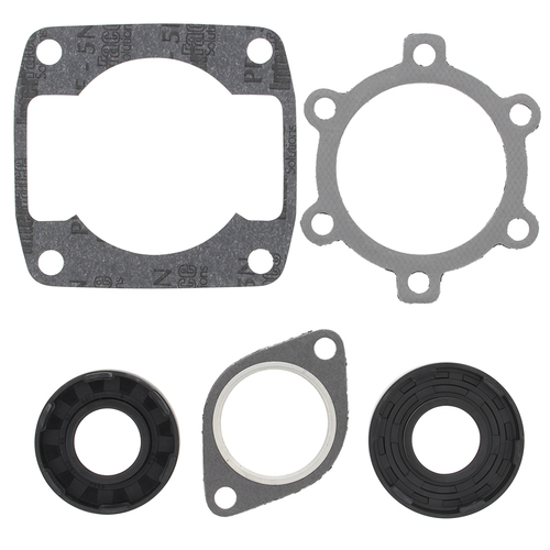Full Engine Gasket Set - Arctic Cat (250 Lynx 2000 S 77-80)
